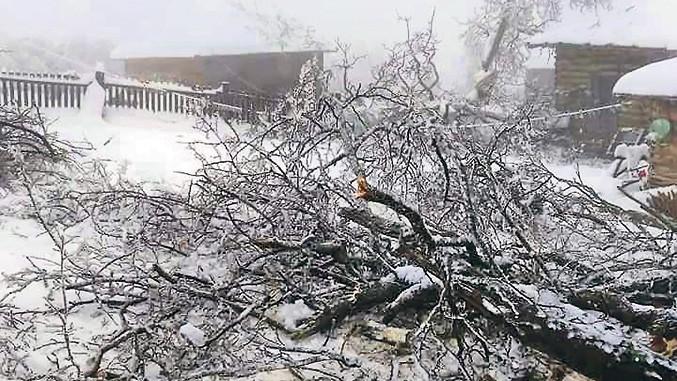 Winterschäden in Serbien